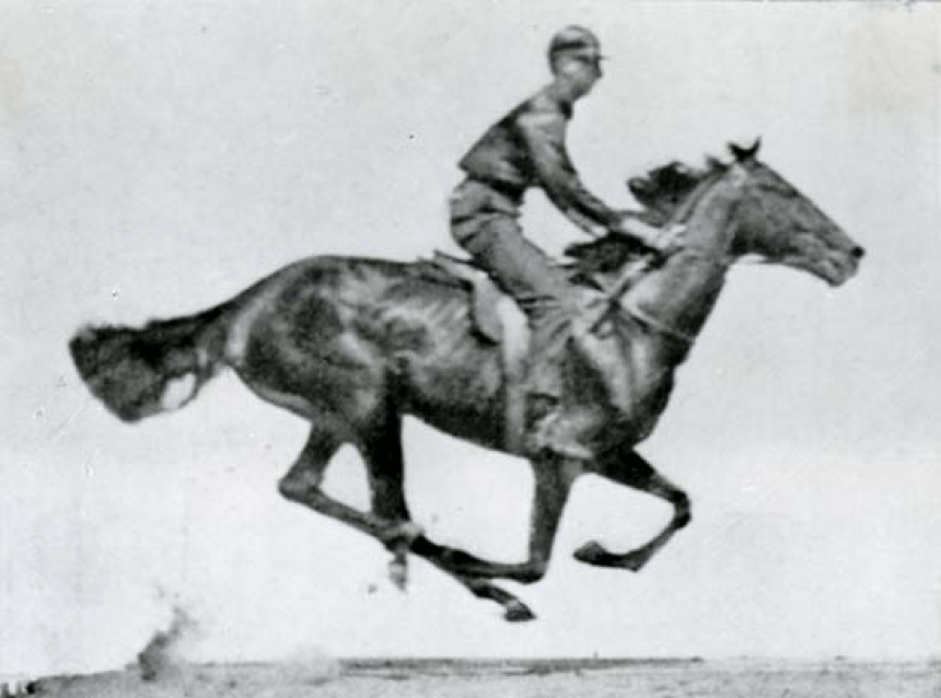 One photograph of a series taken by Edward Muybridge of a running horse. Courtesy of the British Film Institute, London