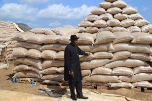 Image of President Goodluck Jonathan, Groundnut Pyramids