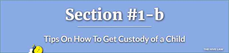 How To Get Custody of a Child - How To Get Full Custody Of My Children - How to Get Full Custody