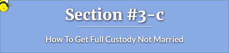 How To Get Full Custody Not Married - How To Get Full Custody - Visitation Right For Fathers