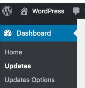 Update Options -How to Disable Auto-Update Plugin in WordPress