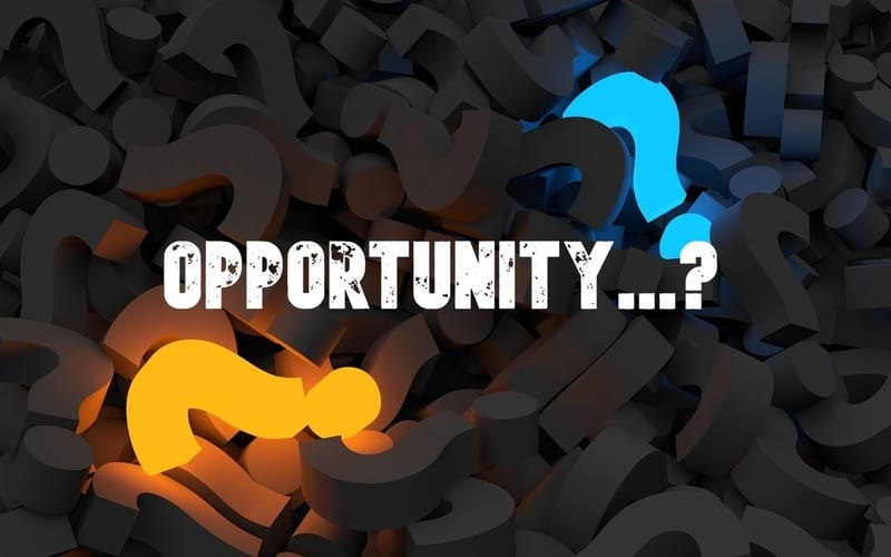 thp-opportunity cover
