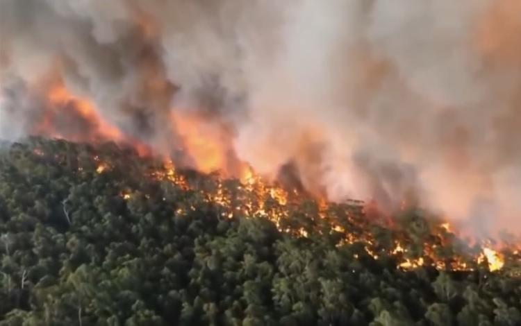 Catostrophic bushfires