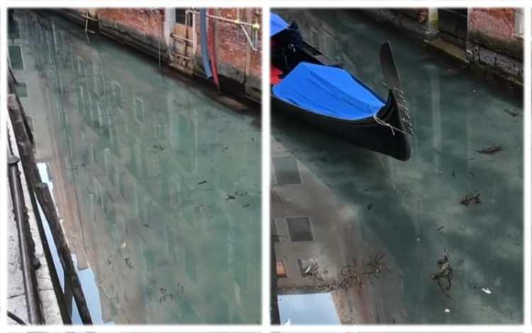 Venice after quarantine
