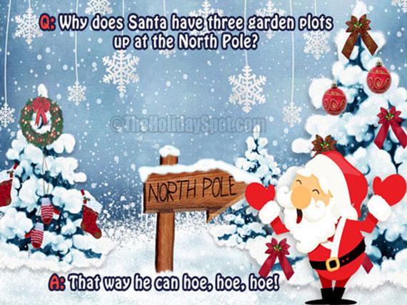 Dusty Paw Does Christmas Jokes Dusty Paw