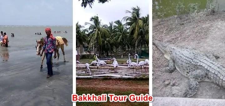 Bakkhali tour plan from Kolkata | 10 tourist spot guide