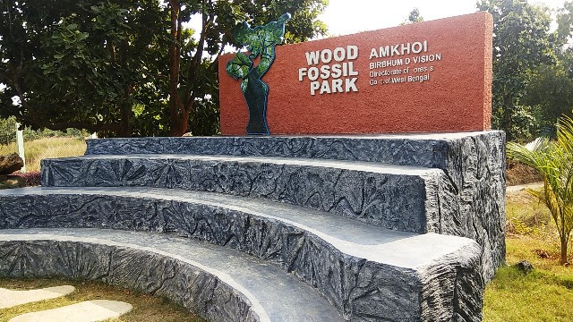Wood fossil park
