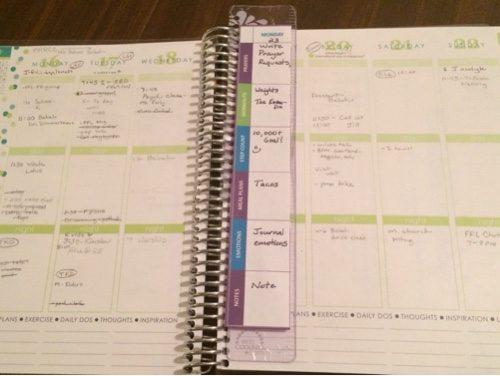 Erin Condren Healthy Life Planner