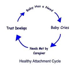 Healthy Attachment Cycle