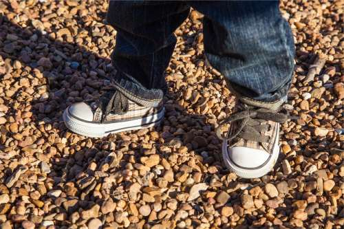 When a Child Sexually Abuses a Sibling