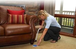 EZ Moves Furniture Moving System
