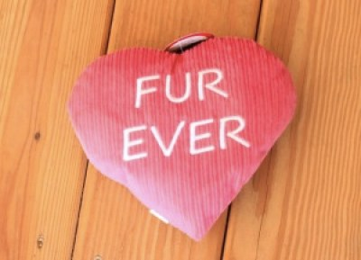 Fur Ever Heart