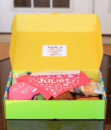 Open February Pet Treater box