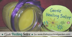 How to Make a Gentle Healing Salve