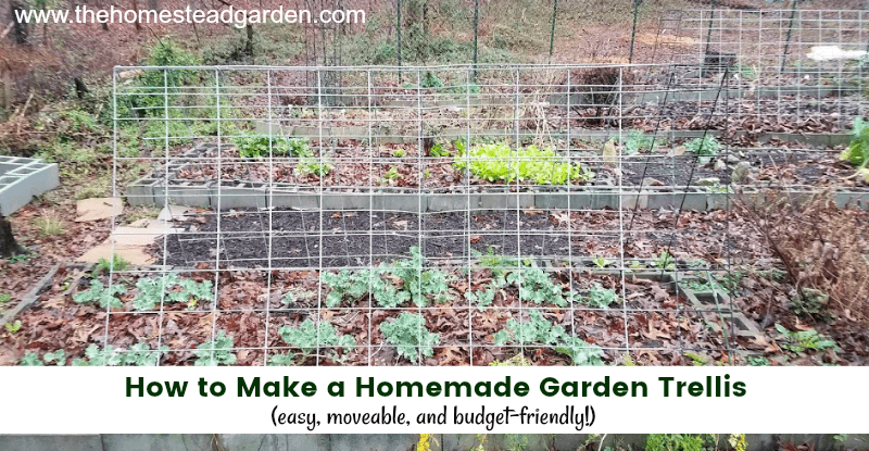 How to Make a Homemade Garden Trellis (easy and moveable!)