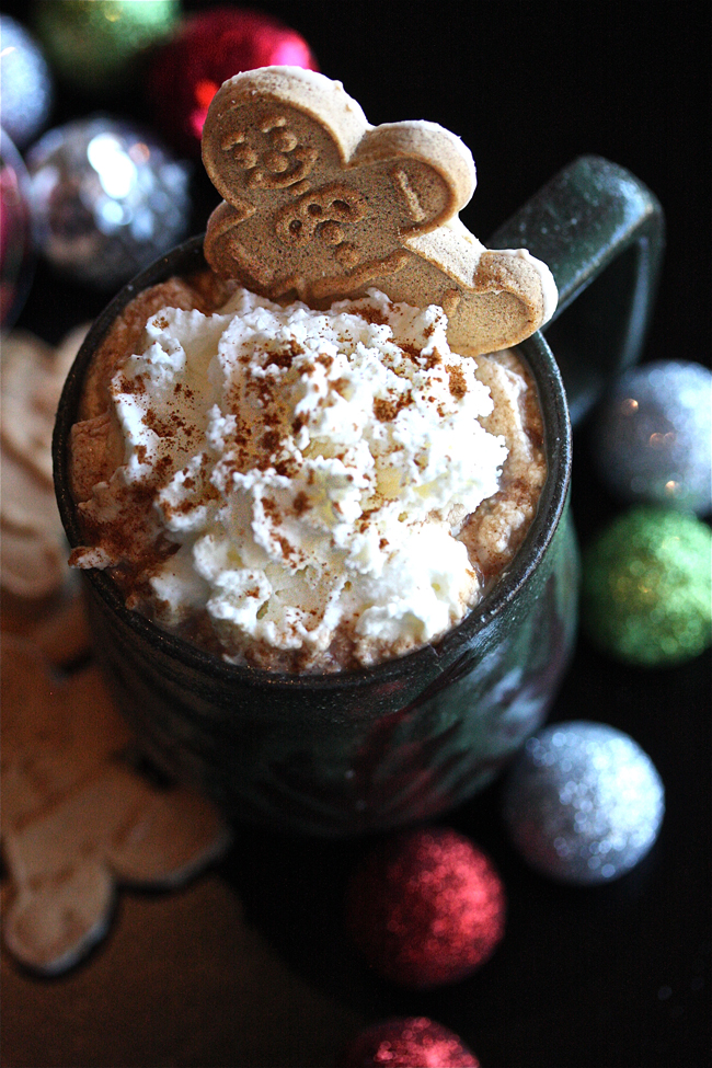 Gingerbread Hot Cocoa 2 | The Hopeless Housewife