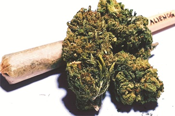 2 jailed over possession of 3kg Indian hemp