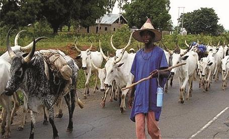 Herdsmen attack: ODSG partners stakeholders to fight menace