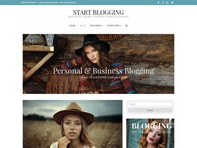 best minimal wordpress blog themes
