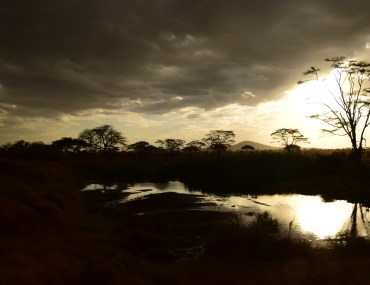 sunset across a pond in the serengeti plains tanzani