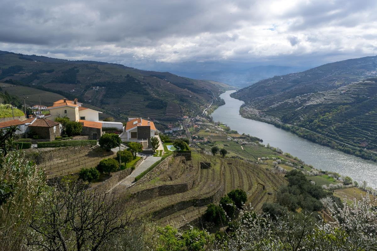 One Beautiful Drunken Day: How to Tour the Douro