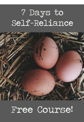 7 Days to Self-Reliance
