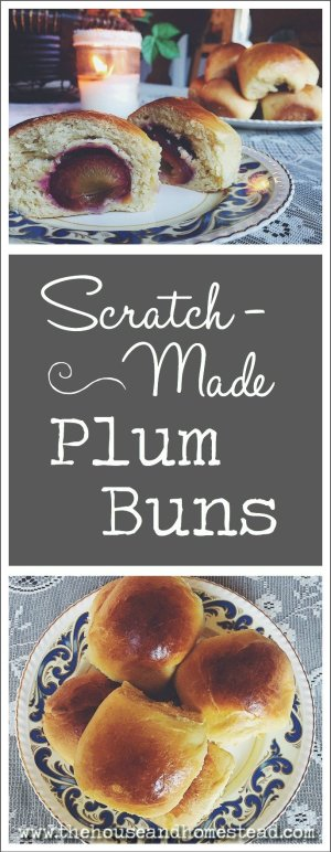 These homemade plum buns are made with sweet prune plums, coated in sugar, wrapped in scratch-made sweet bread dough and baked to golden perfection. They are best eaten right out of the oven, but also make a great freezer meal!
