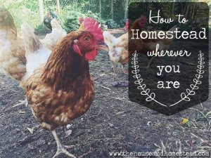 How to Homestead Wherever You Are