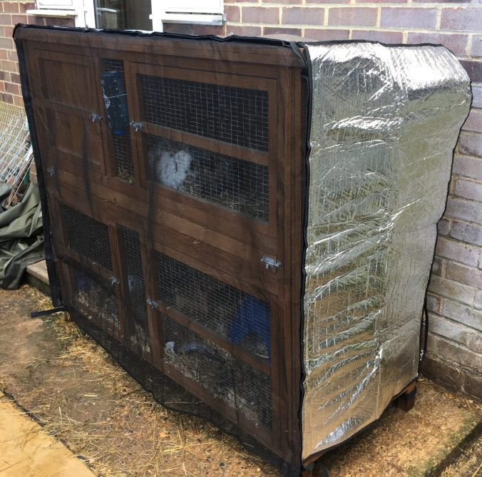 hutch-snuggle-rabbit-hutch