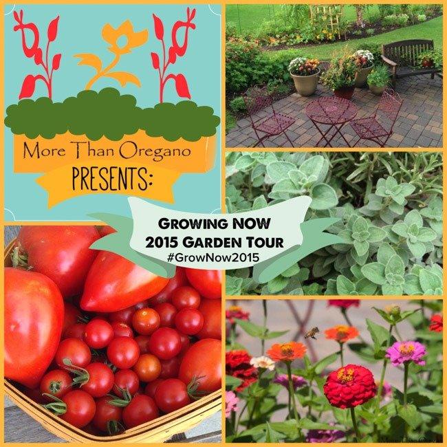 Taking Back The Garden: #GrowNOW2015 Week 14