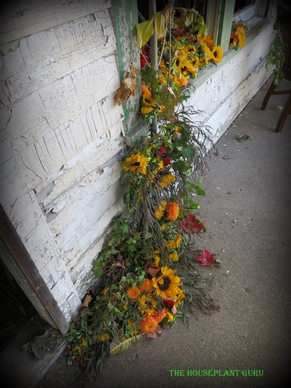 Flowers spilling onto the porch from the Michigan Magic room