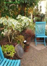Des Moines Botanical Garden 045