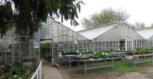 Graye's Greenhouse Plymouth Michigan