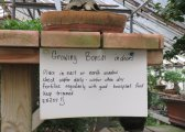 Indoor bonsai care sign