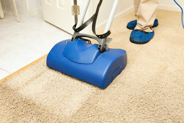The 10 Best Carpet Cleaners To Buy In 2018