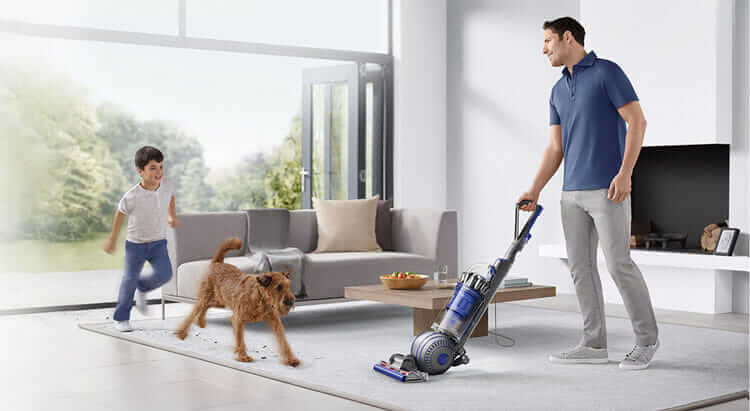 Ball Animal 2 Upright by Dyson