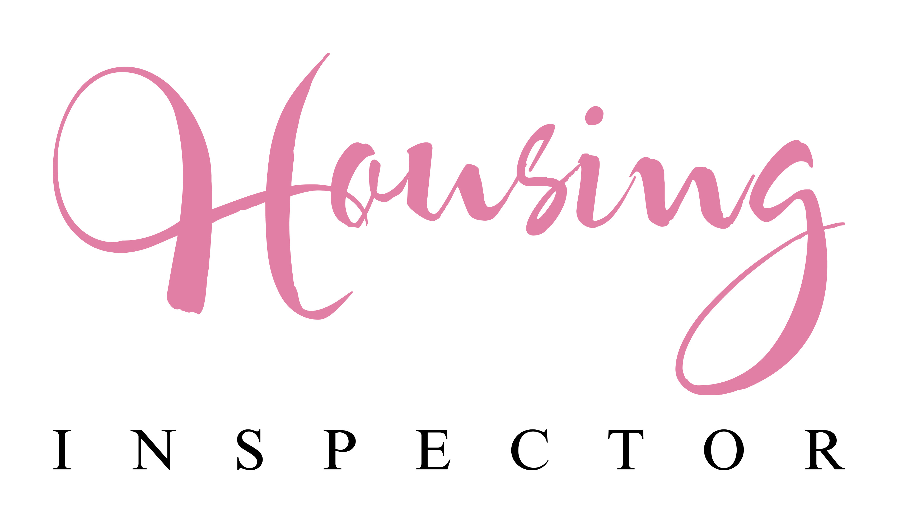 the housing inspector