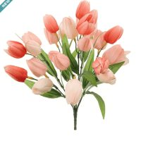 Salmon Pink Tulip Bush by Ashland®