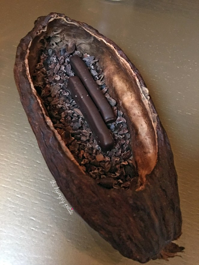 Mignardes of chocolate served in a cacao shell