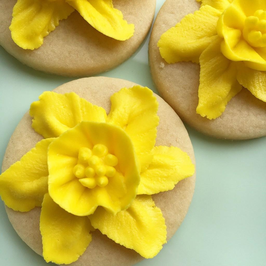 Daffodil flower