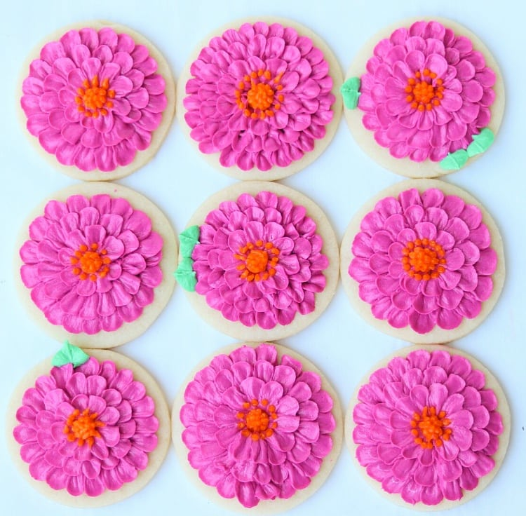 buttercream zinnias