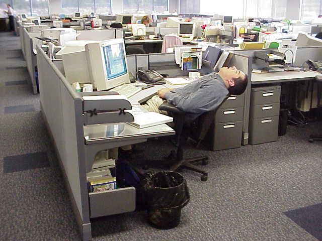 sleeping_at_work