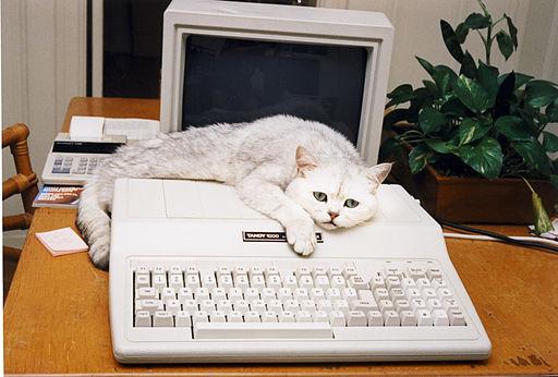 blog post Sabu_with_his_Tandy_1000_Computer