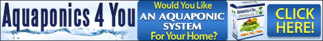 Aquaponics are an easy, fun, and affordable way to feed your family.