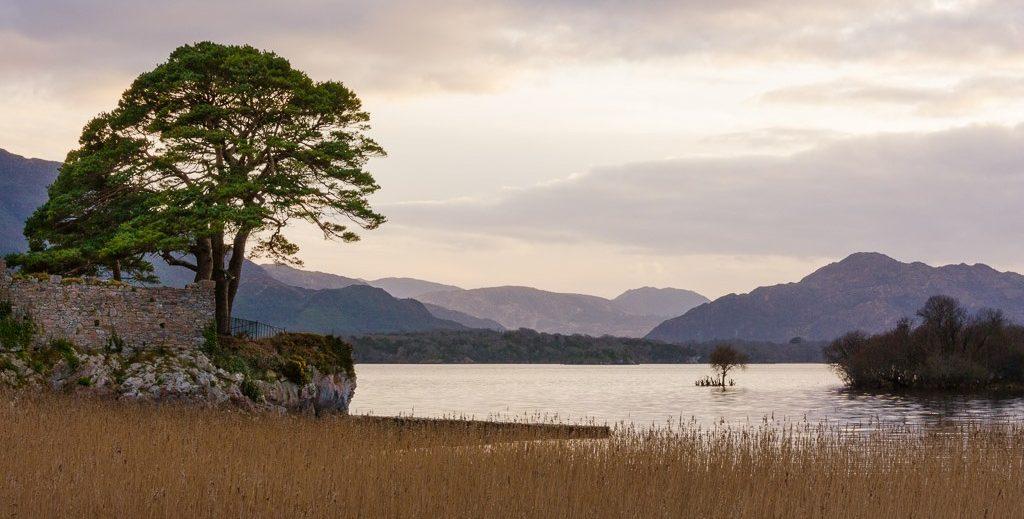 The Idyll Killarney national park