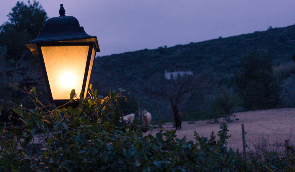 lantern on Spanish farm working holidays