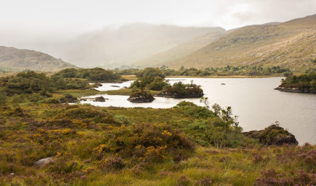 Things to do in Killarney National Park