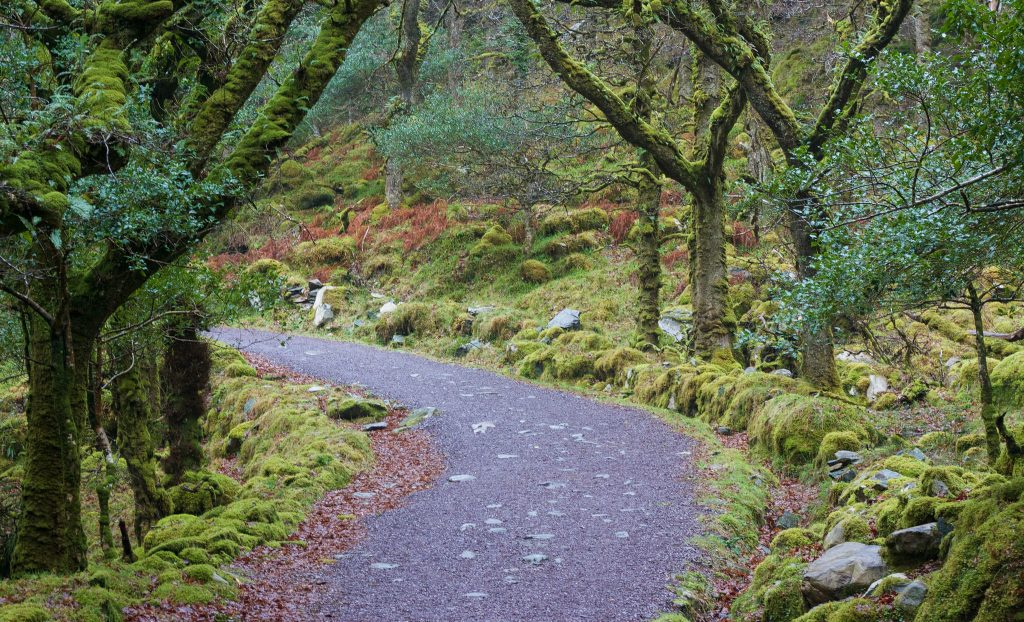 Torc Mountain Route in Killarney, Ireland