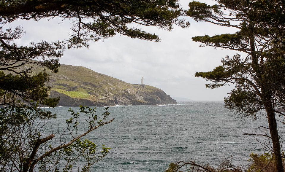 Ring of Beara - Dunboy Castle walk