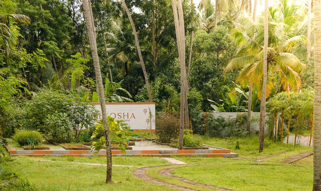 yoga in kerala, yoga retreats in kerala
